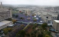 Royals Parade 19 Background