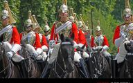 Royals Parade 40 Wide Wallpaper