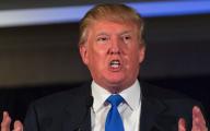 Donald Trump 14 Free Wallpaper