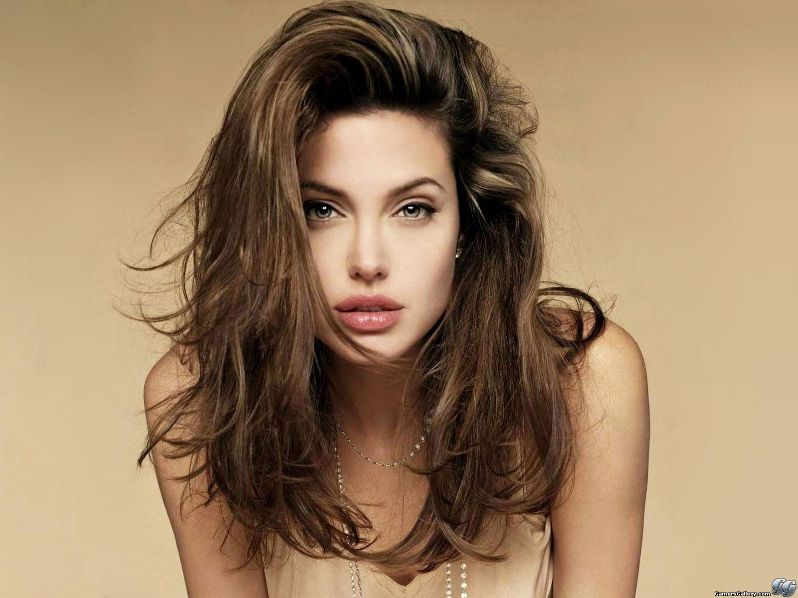 Angelina Jolie 6 Free Hd Wallpaper