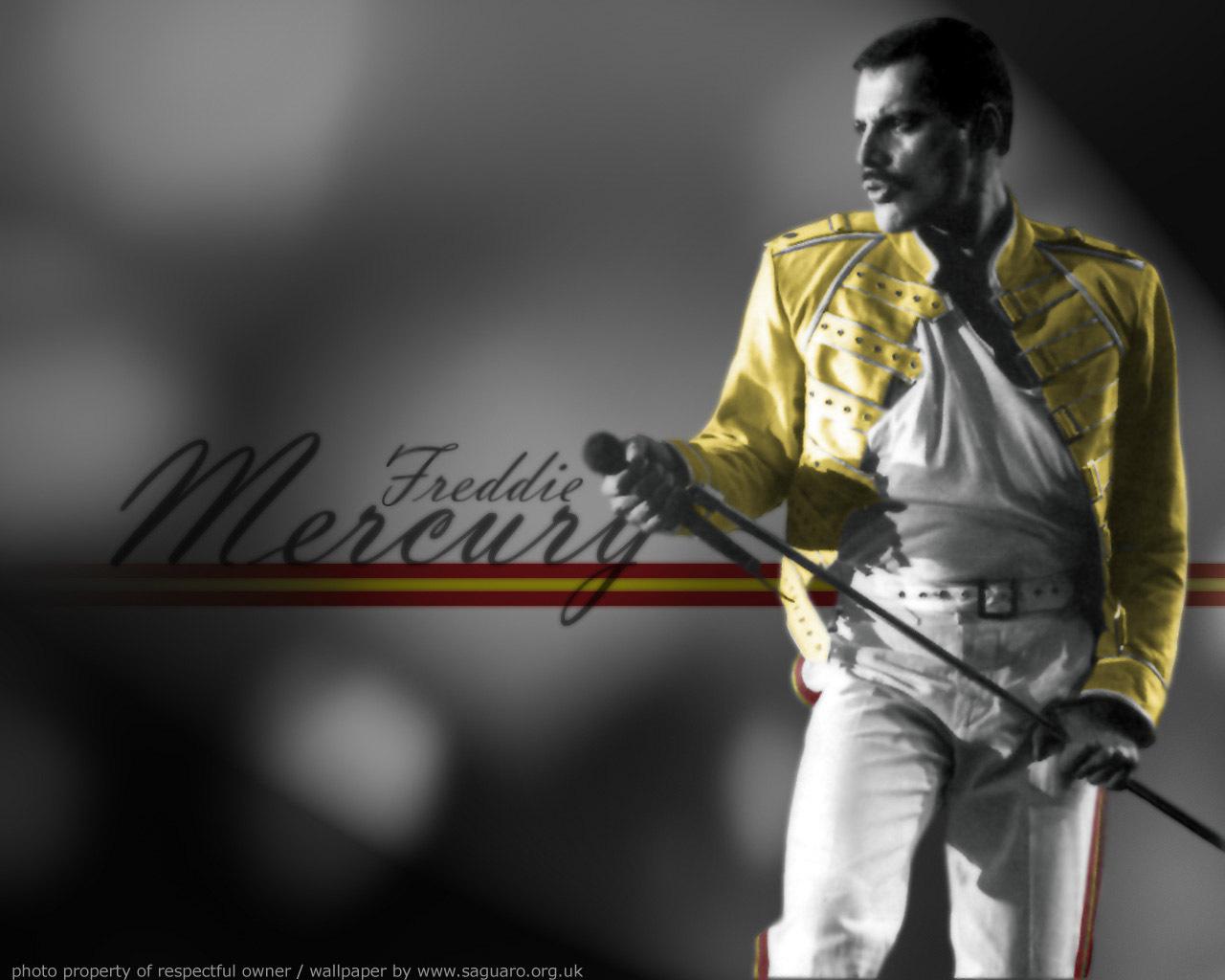 Freddie Mercury 22 High Resolution Wallpaper