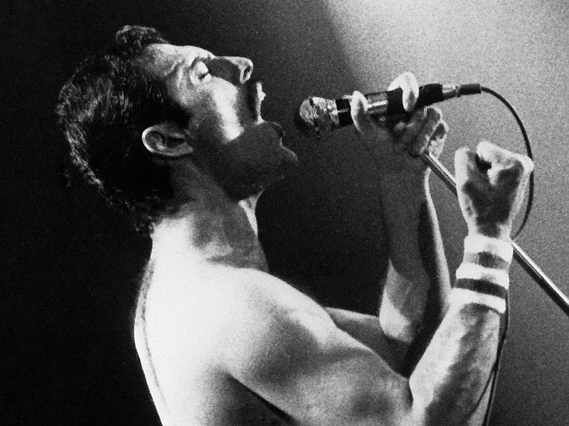 Freddie Mercury 7 Free Wallpaper